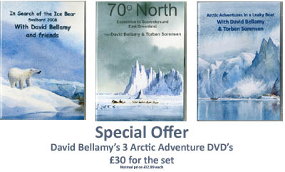 arctic dvd's 4 copy