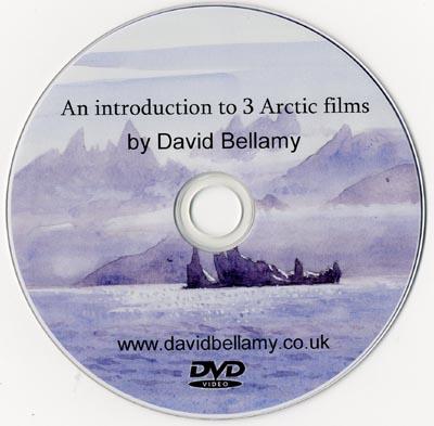 arctic dvd intro sm
