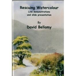 Rescuing Watercolours DVD